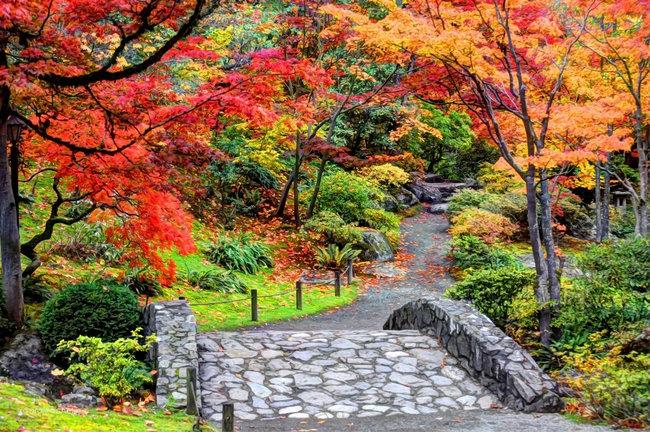 Japanese Garden   © Rachel Samanyi/Flickr