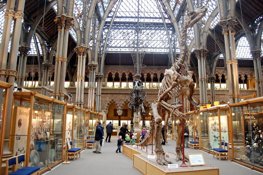 Oxford University Museum Of Natural History | © Magnus D/Flickr