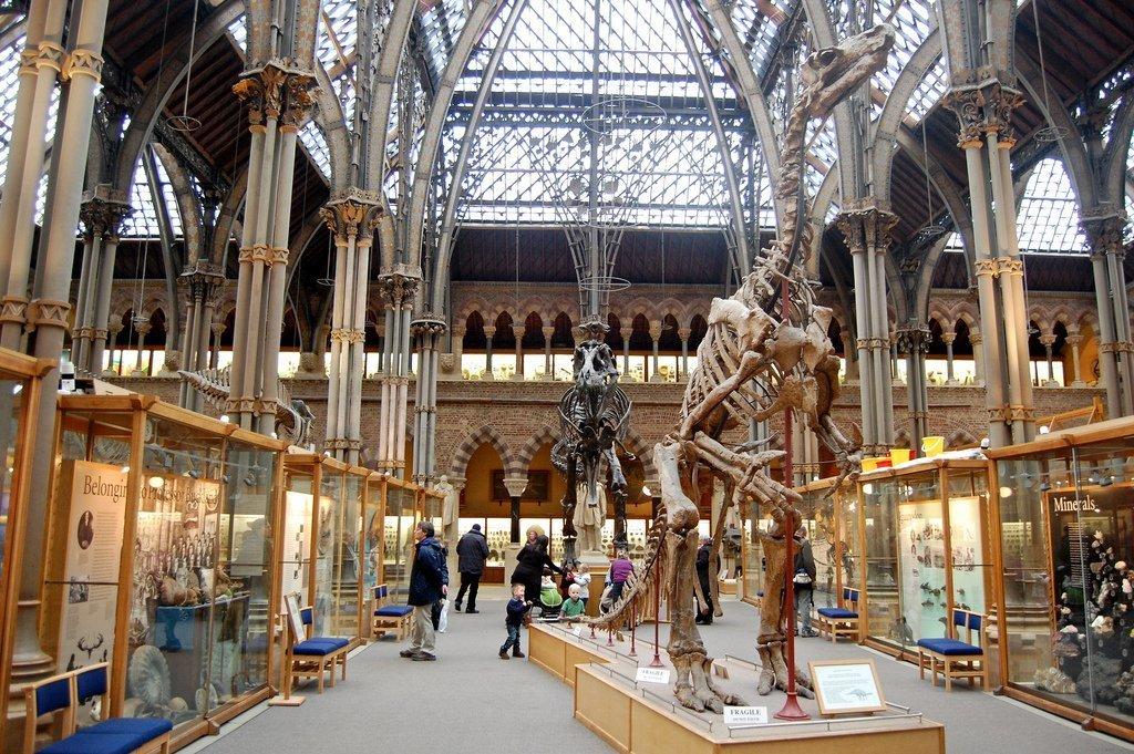 Oxford University Museum of Natural History   © Magnus D/Flickr