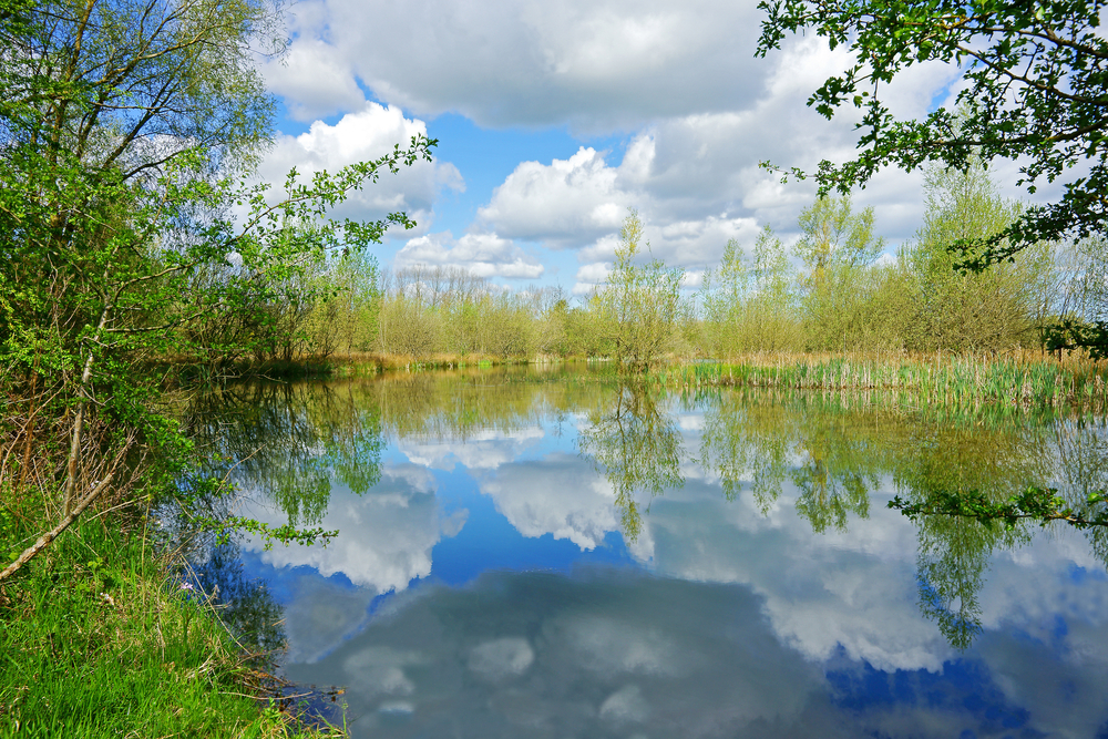 Cotswold Water Park | © PJ Photography/Shutterstock