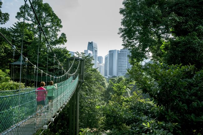 Walkways at the Kuala Lumper Eco Forest Park | © Zuhairi Ahmad/Shutterstock