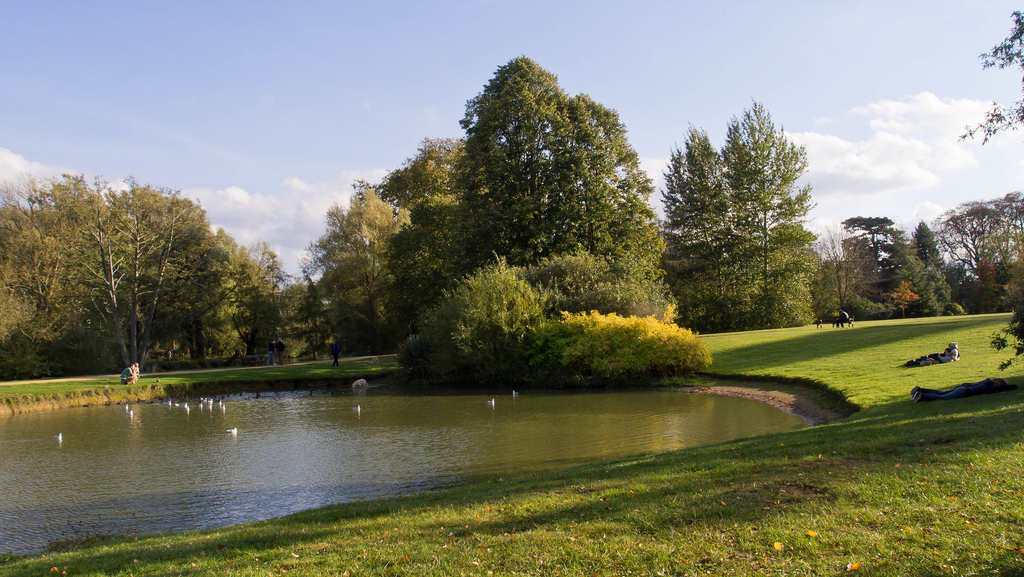 University Parks, Oxford   © Ed Webster/Flickr