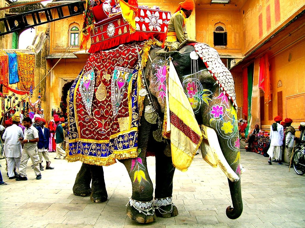 https://commons.wikimedia.org/wiki/File:Decorated_Indian_elephant.jpg