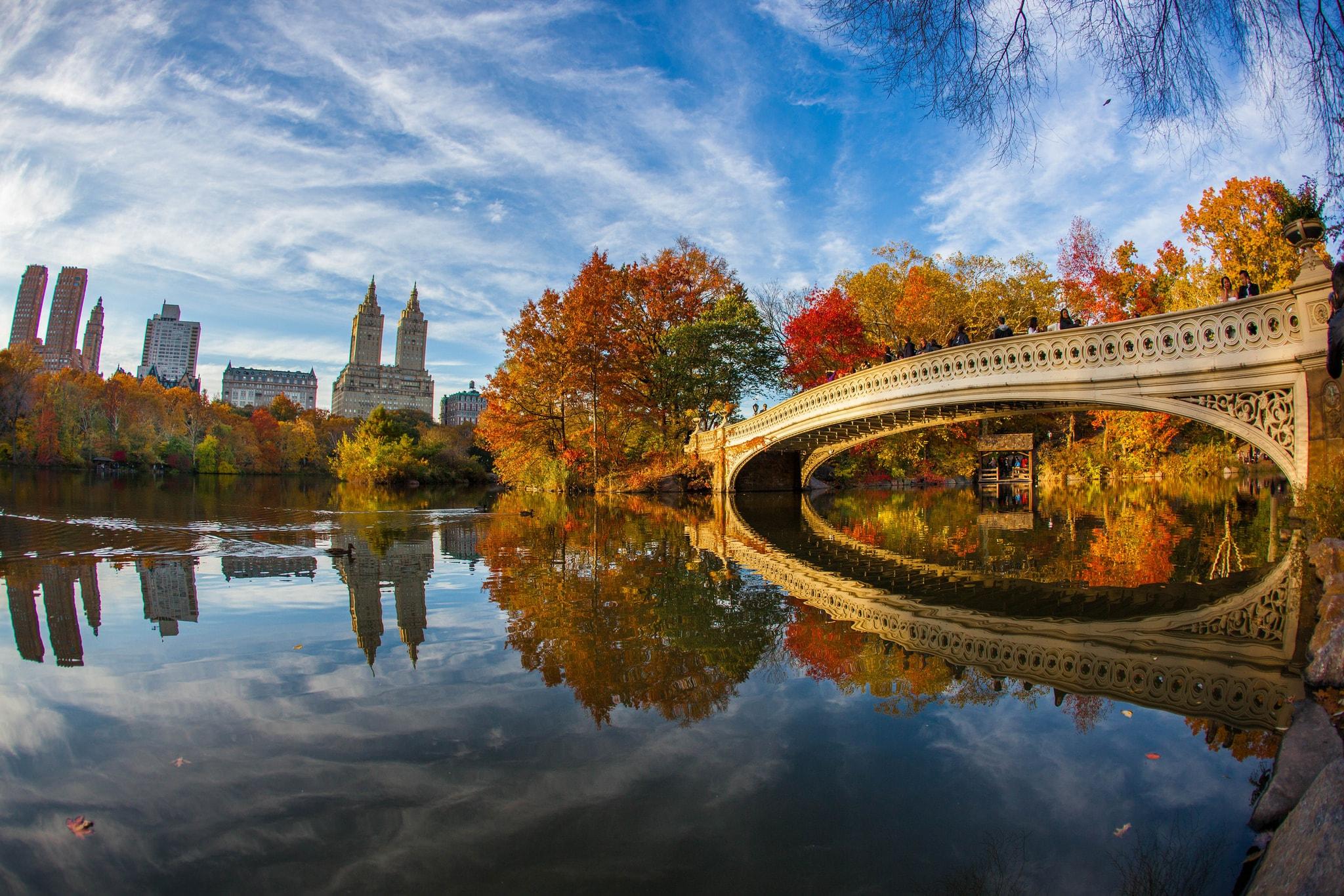Central Park bow bridge  © Anthony Quintano