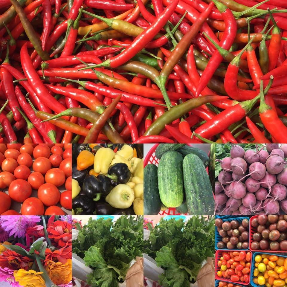 Garden District Farmer's Market | Courtesy of Garden District Farmer's Market