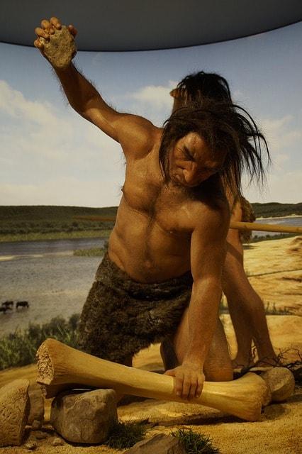 Neanderthal Museum, Dusseldorf, Germany | © Efraimstochter/Pixabay
