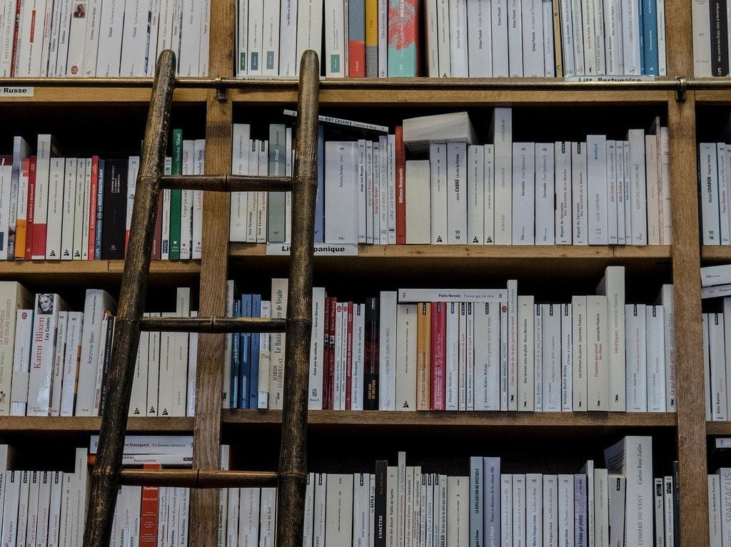 Old-fashioned library ladder | manolofranco / Pixabay