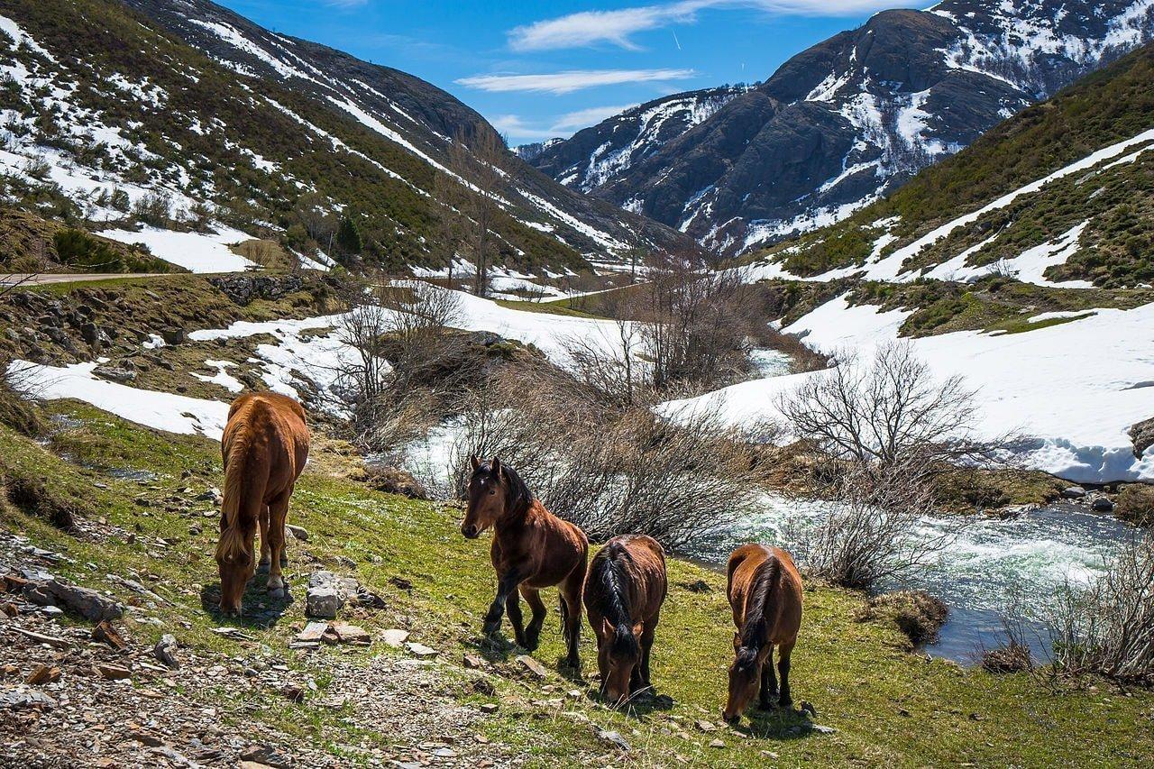 Picos de Europa, Spain | ©Dave Evans / Wikimedia Commons