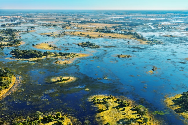 View over the Okavango Delta, Botswana   © Vadim Petrakov/Shutterstock