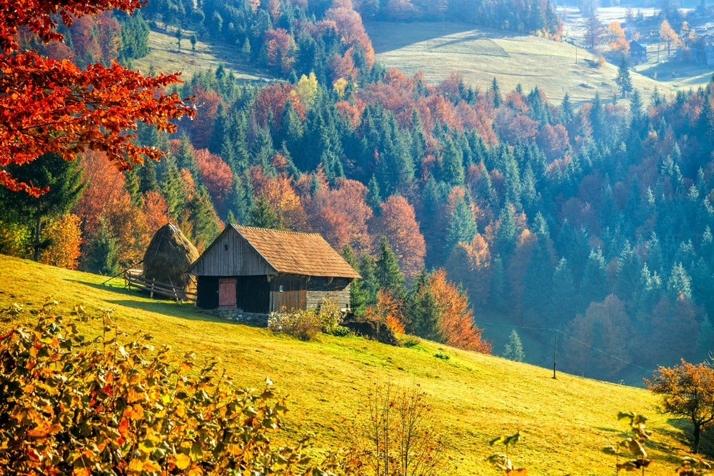 Mountain Village In Transylvania, Romania