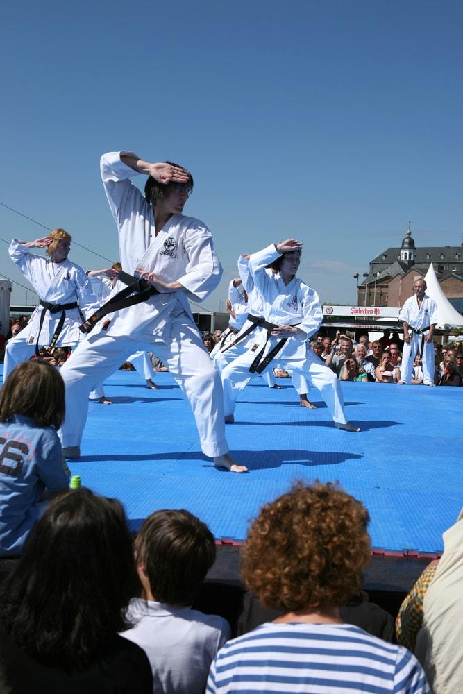 Japan Day in Dusseldorf, Germany   © Ralf Herschbach/Shutterstock