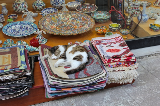 Cat sleeping on traditional Turkish rugs | © Murat An/Shutterstock