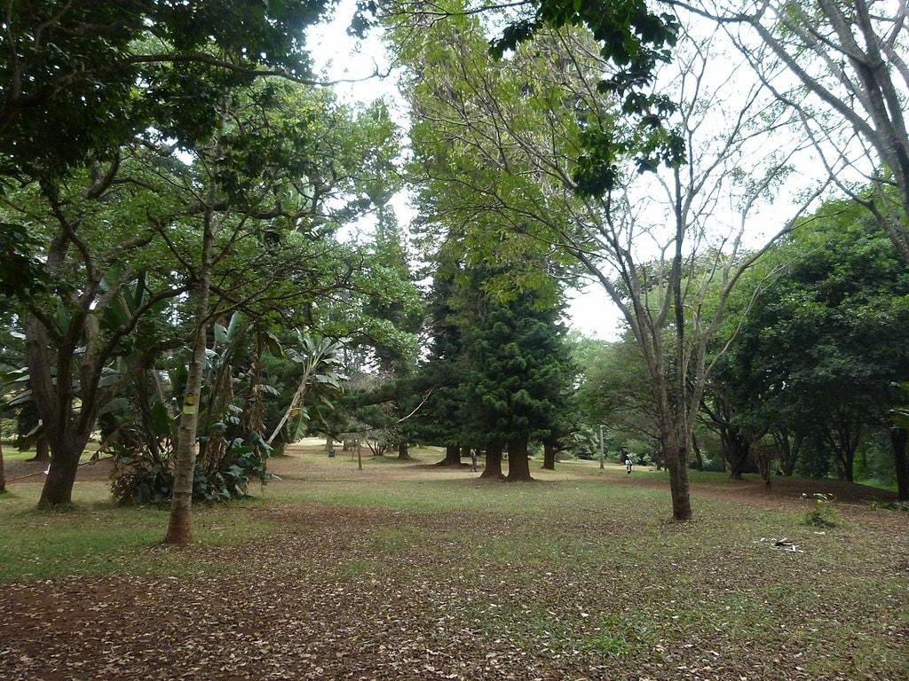 1200px-Nairobi_Arboretum_Park_03