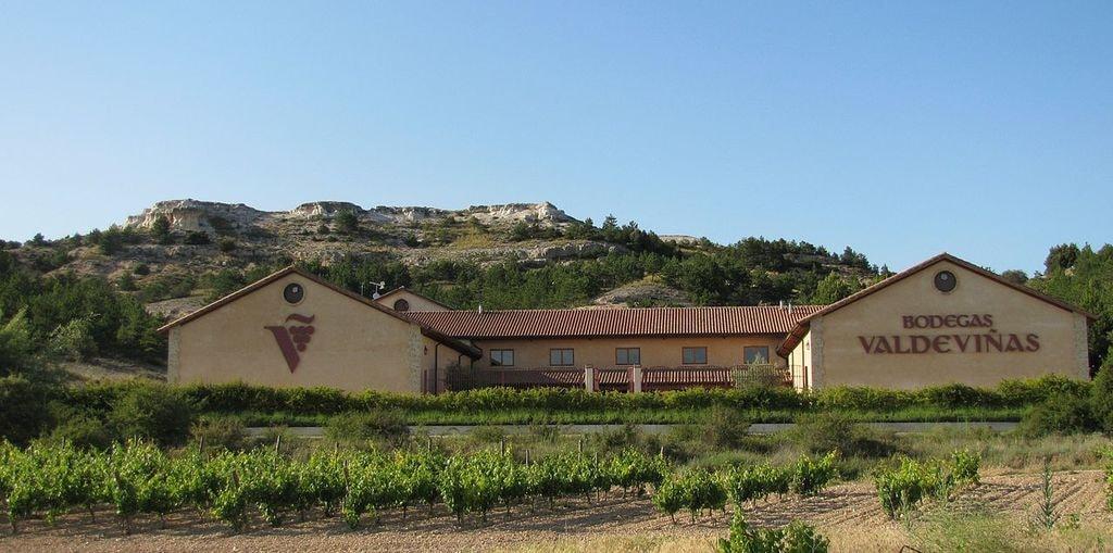 Bodega Valdeviñas, Ribera del Duero, Spain | ©Mick Stephenson / Wikimedia Commons