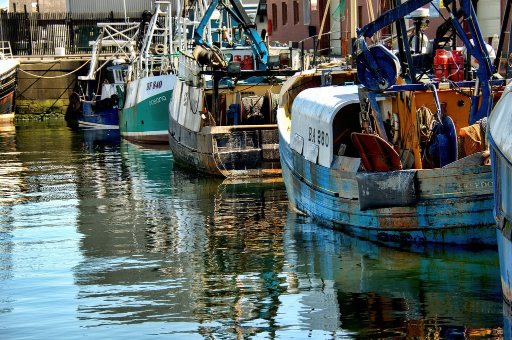 Fishing Boats in Troon Harbour, Scotland