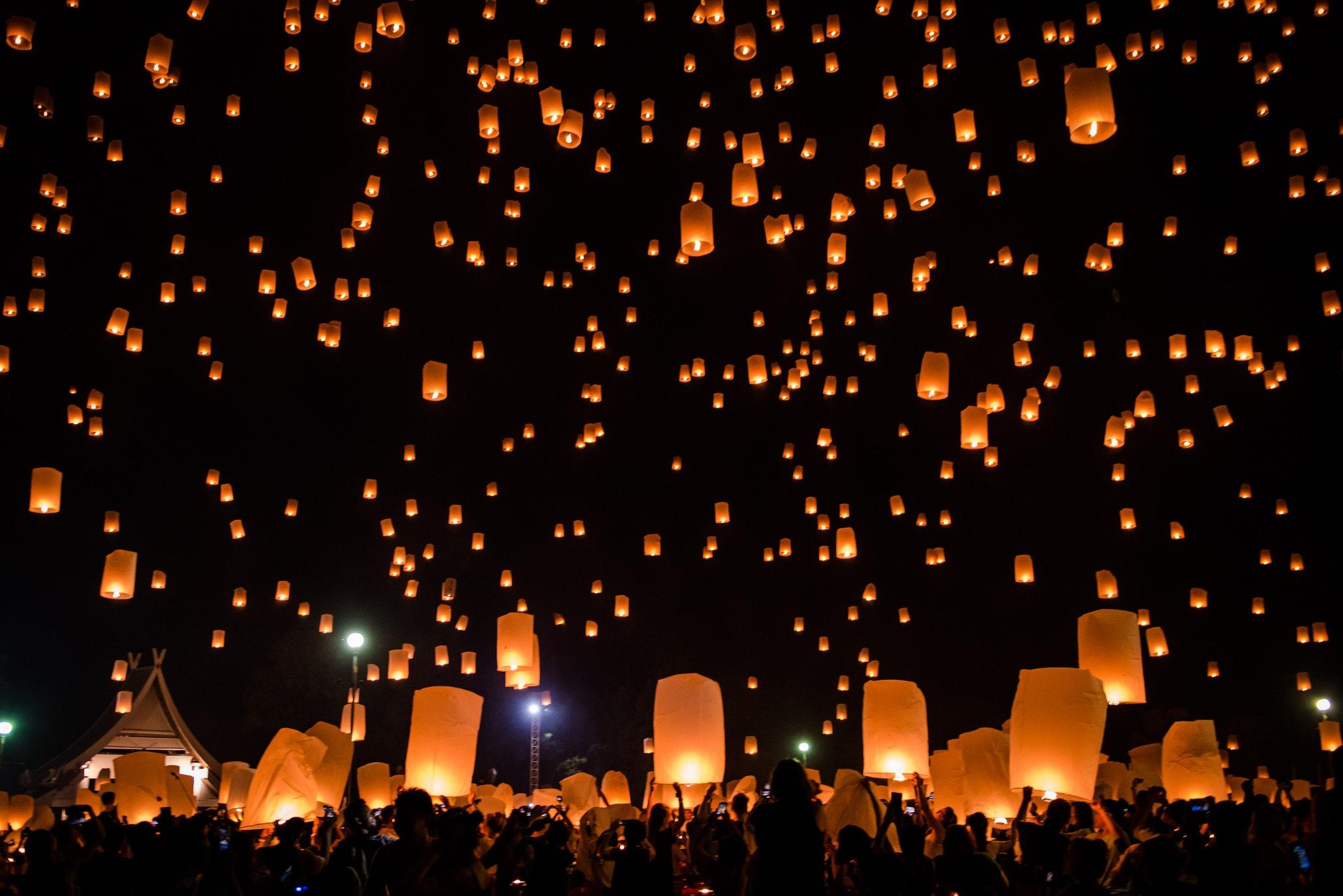 12 Best Willow lanterns images | Lanterns, Paper lanterns, Lantern ... | 1367x2048
