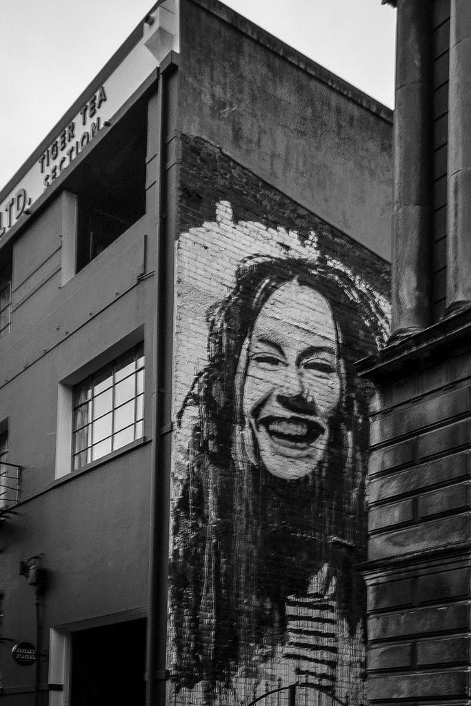 The Best Street Art In Dunedin New Zealand