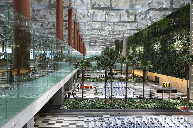 Terminal 3 – Green Wall & Baggage Belt