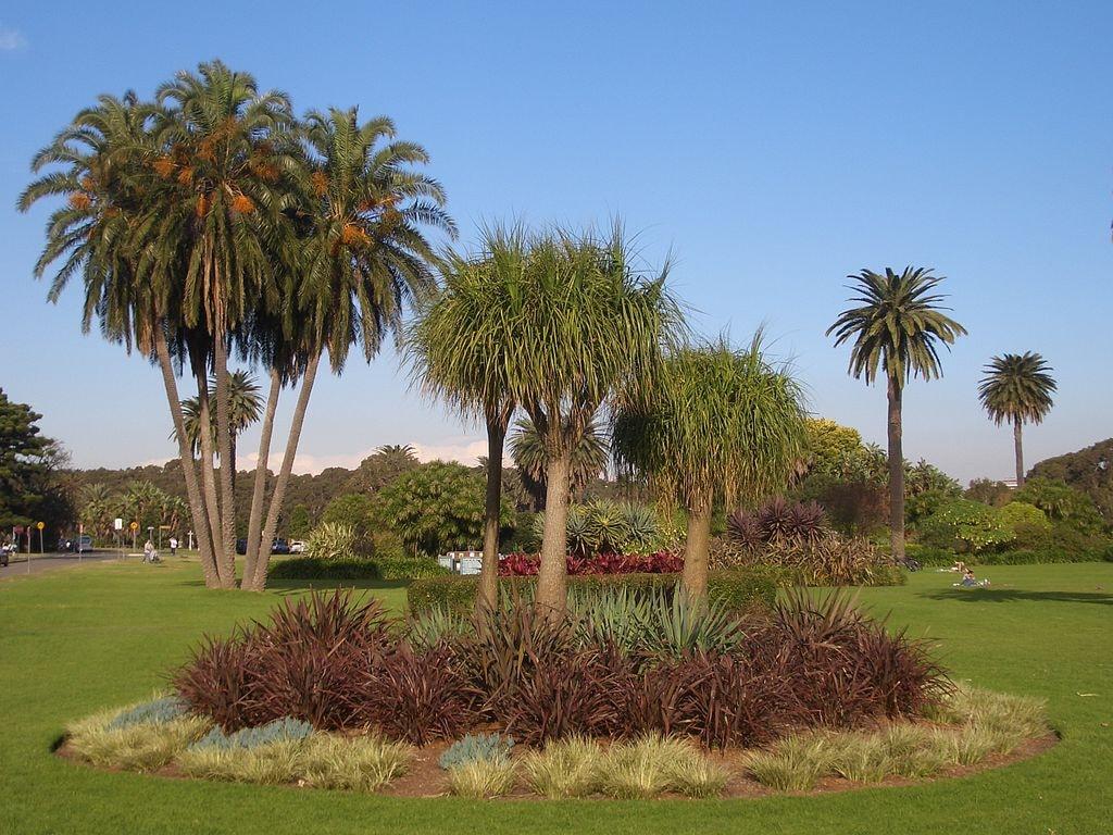 Centennial Park Sydney   © J Bar/Wikimedia Commons