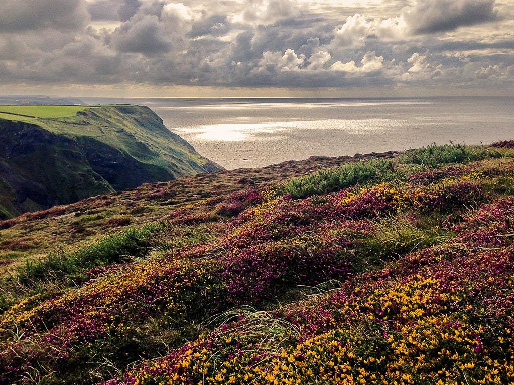 cornish-coast-moors-jules-gilson-flickr