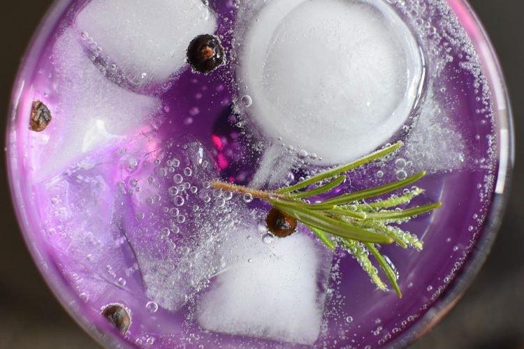 gin-tonic-1859465_1280