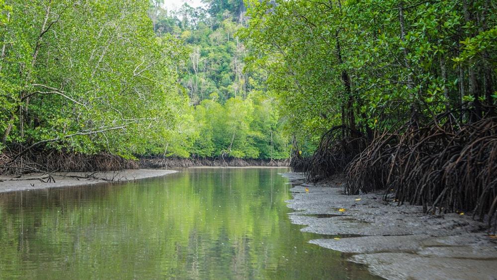 19 Stunning Photos That Prove Langkawi Is Paradise