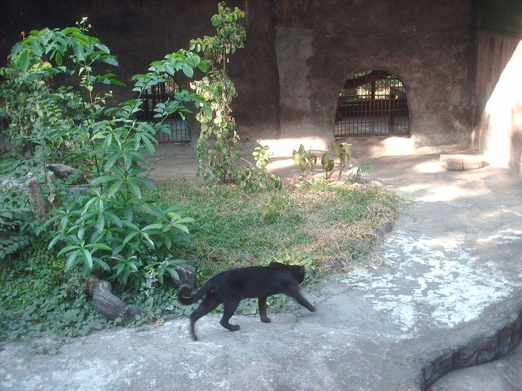 Lao Zoo | © Pfinge/WikiCommons