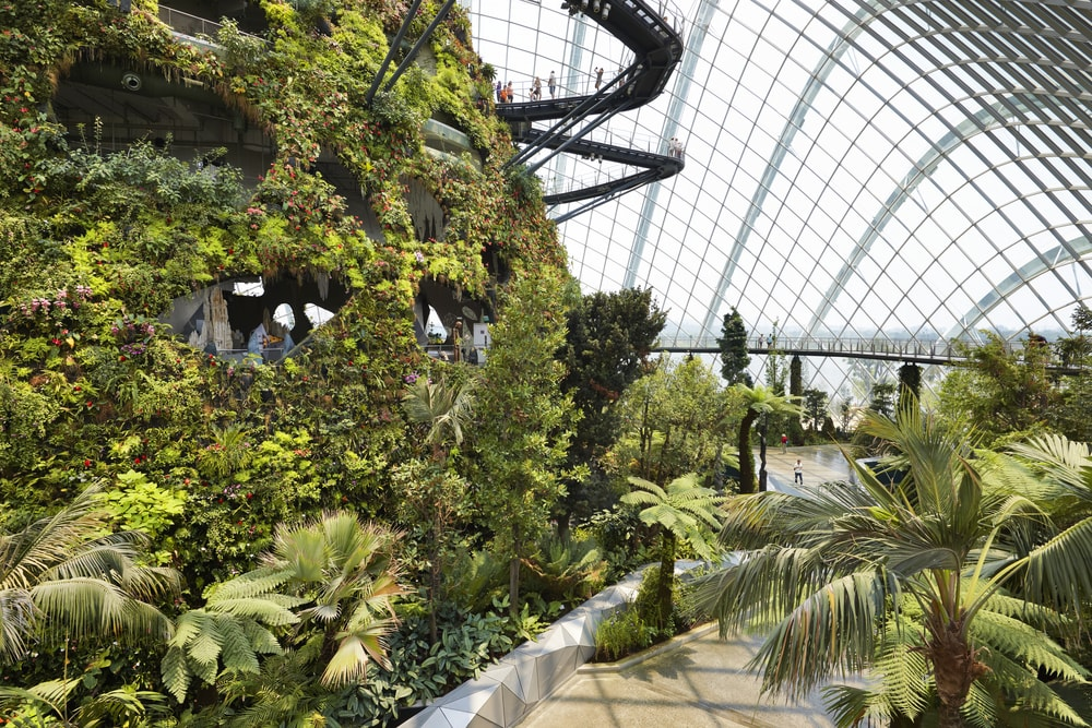 Gardens by the Bay, Singapore | © R.A.R. de Bruijn Holding BV / Shutterstock