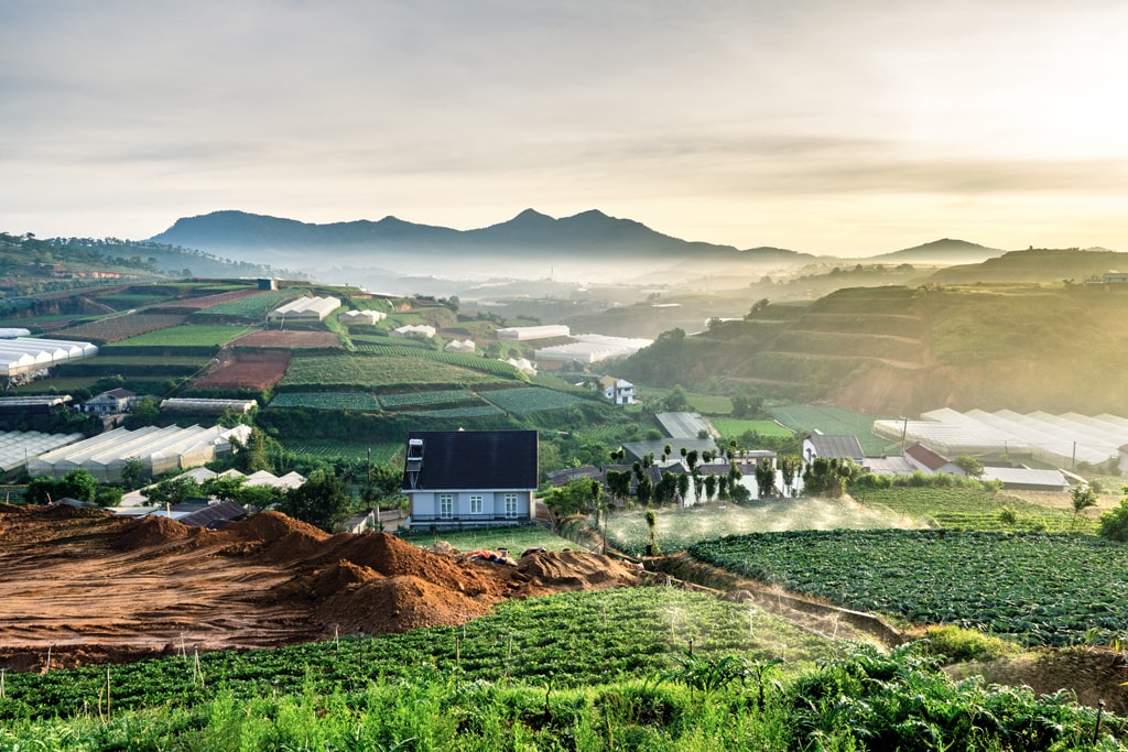 How To Spend 48 Hours in Dalat, Vietnam