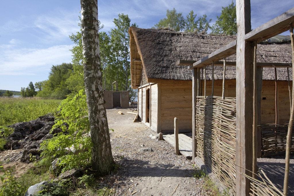 Viking village 2