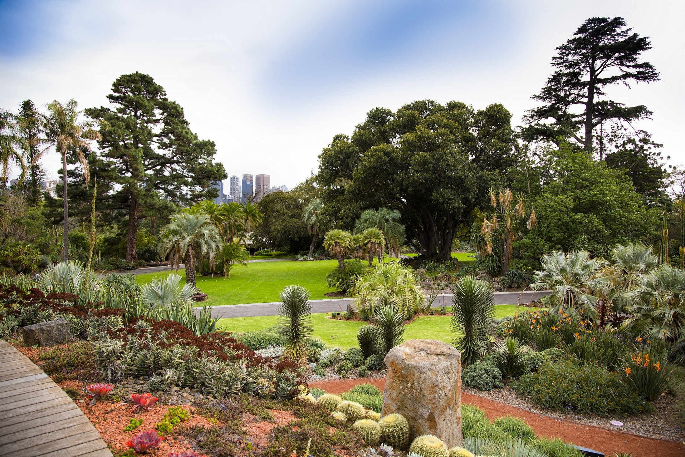 Courtesy of Royal Botanic Gardens Victoria. Photographer: Adrian Vittorio