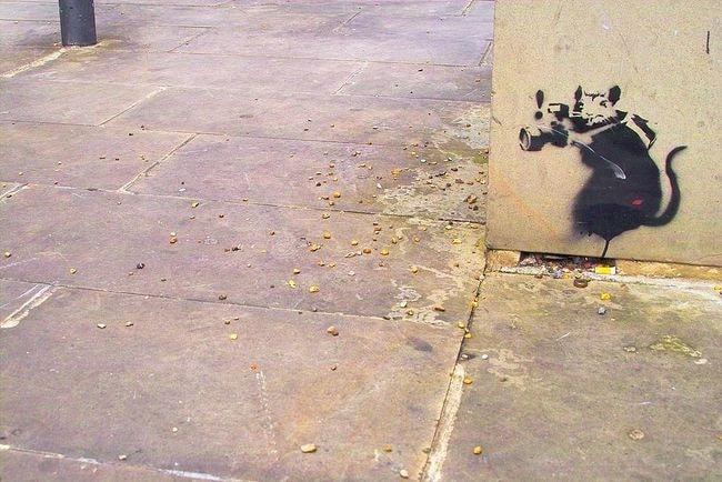 1024px-Banksy_-_Rat_Photographer