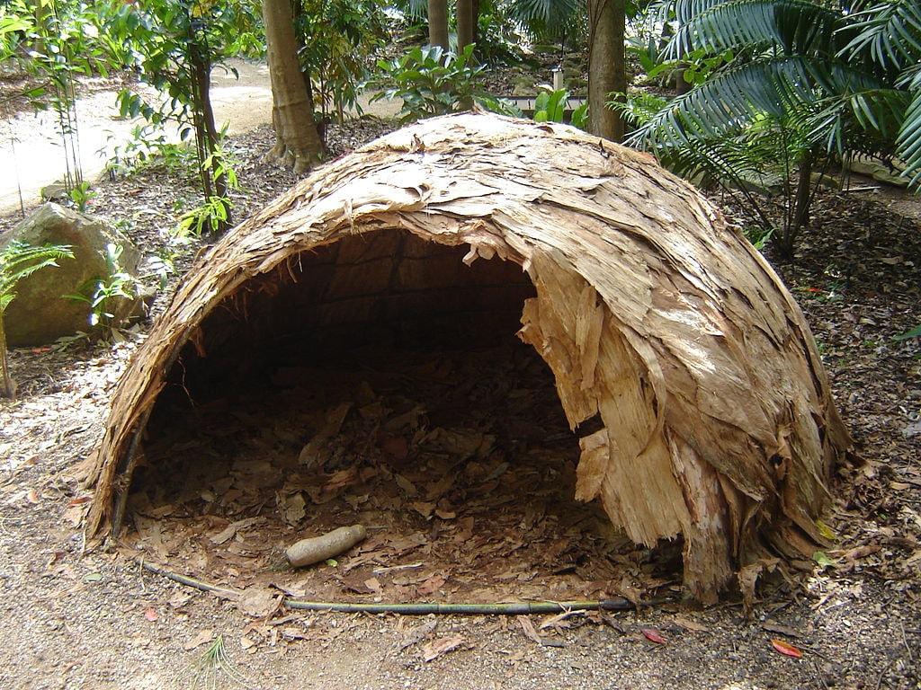 1024px-Hut-rainforest