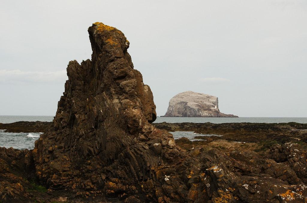Bass Rock   © Magnus Hagdorn / Flickr