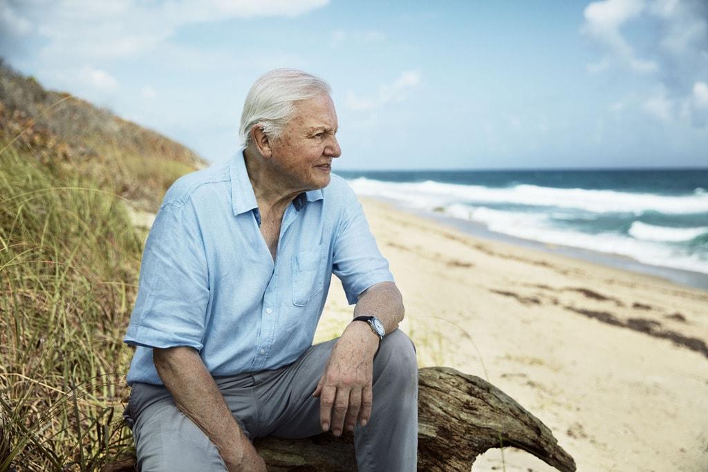 Sir David Attenborough in Blue Planet II   © BBC NHU 2017