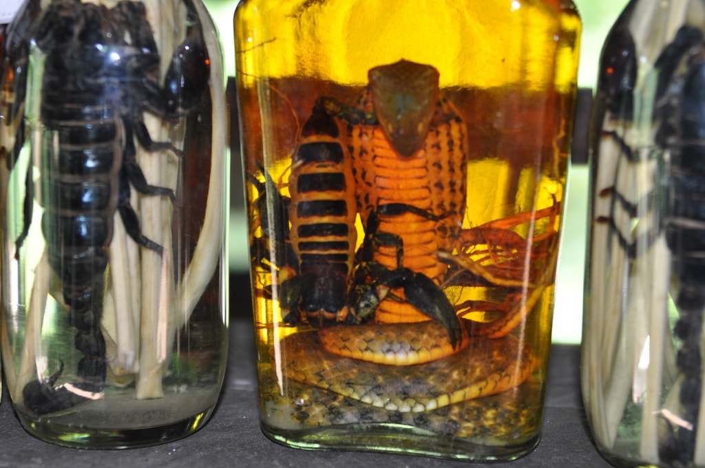 Snake wine with a hint of scorpion | © Shankar S./Flickr