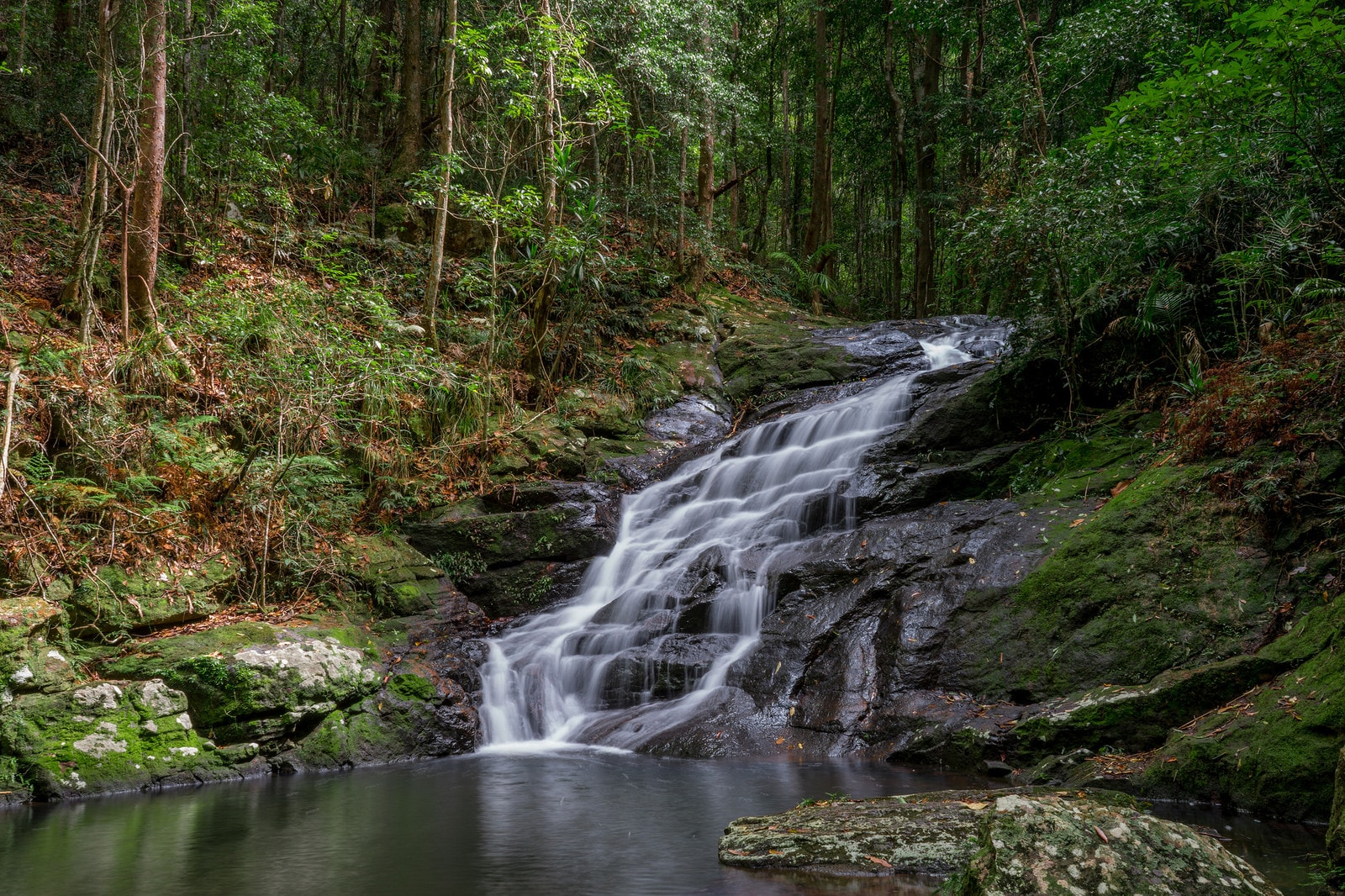 Kondalilla Falls © Flickr / Lenny K Photography