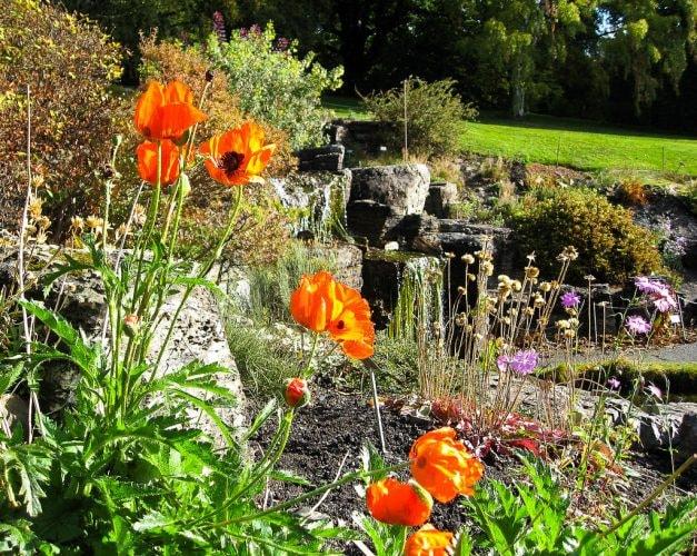 Oslo's Botanical Garden | © Jan Sølve Borlaug / Flickr
