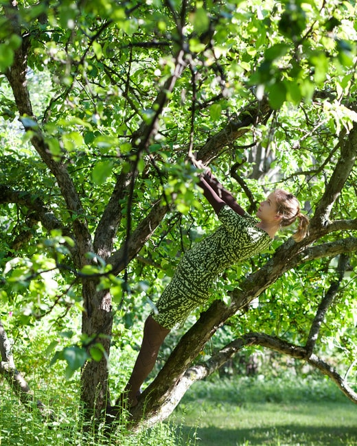 Apple_Tree_lowres