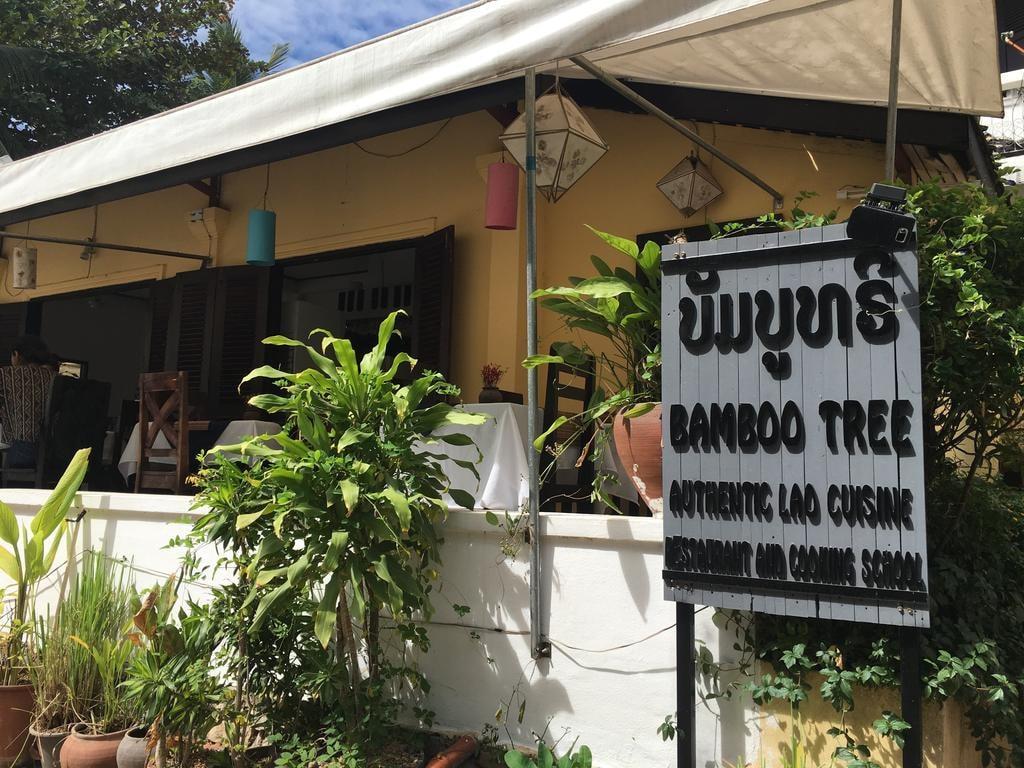 Bamboo Tree | © Regina Beach/Culture Trip