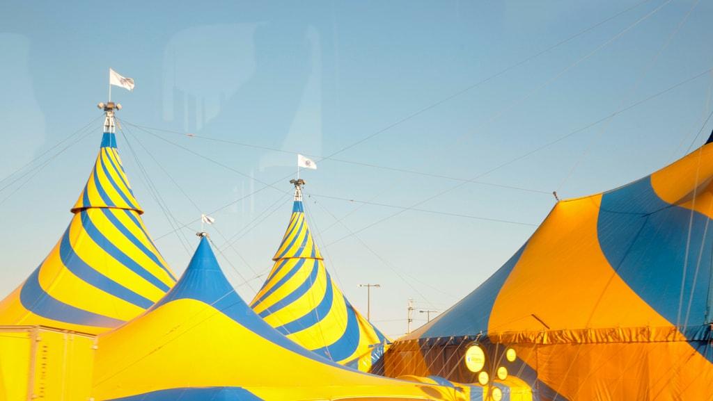 big tops circus