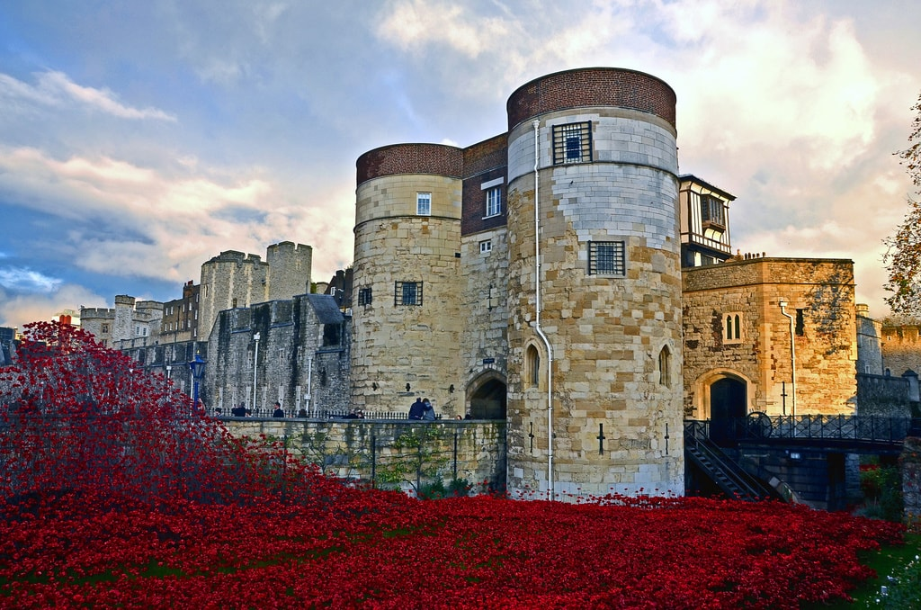 Ceramic poppy installation at the Tower of London, England