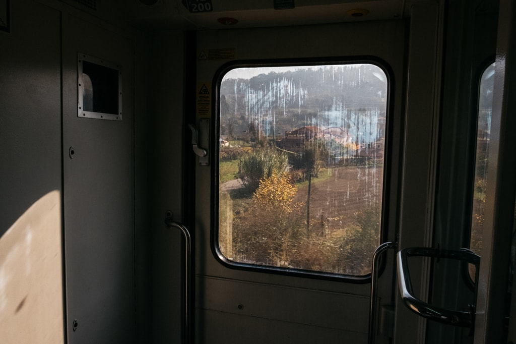 DSCF2737 - WATSON - DOURO, PORTUGAL- TRAIN JOURNEY TO REGUA FROM PORTO