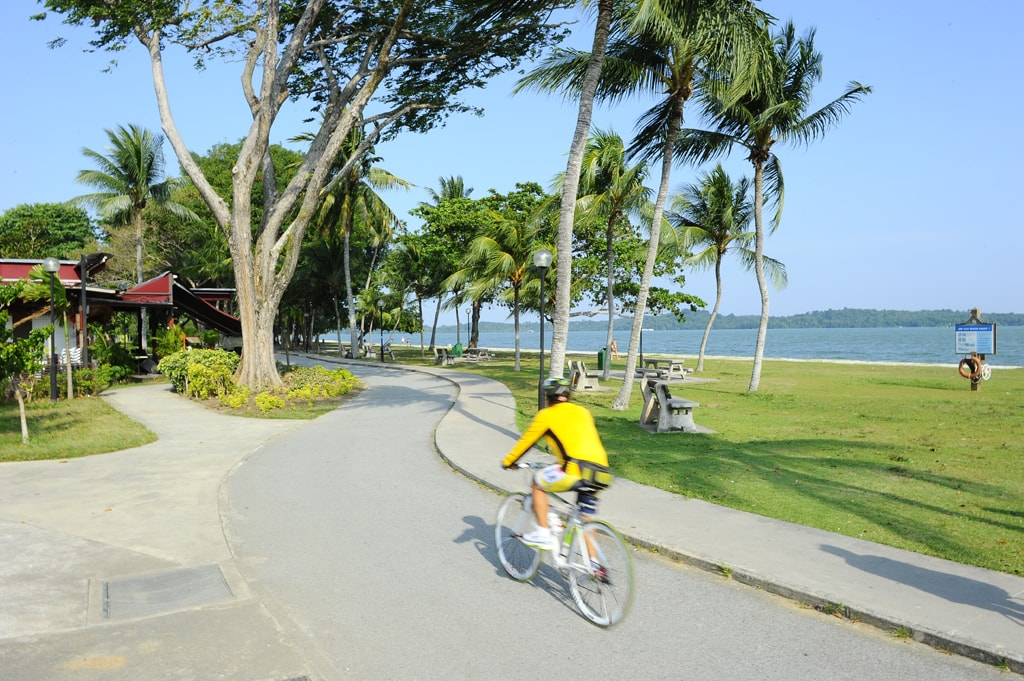 Cycling at East Coast Park | Courtesy Singapore Tourism Board