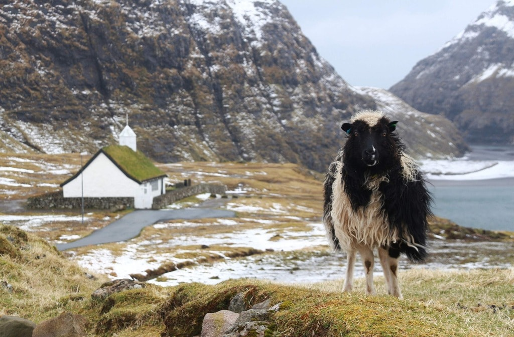Faroe Islands, Denmark | public domain / Pixabay