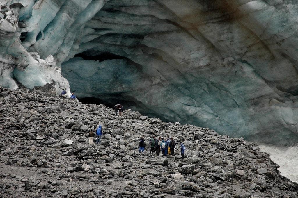 fox-glacier-740546_1280