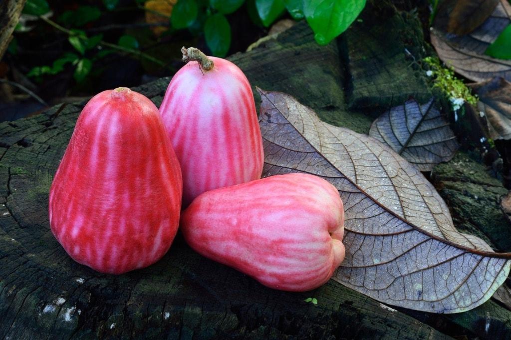 fruit-2429368_1280