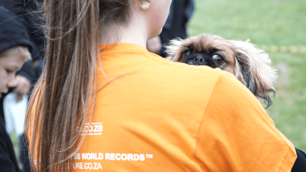 Guiness World Record South Africa_pekinese