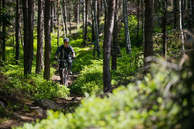 helena_wahlman-bicycle_in_the_woods-3092