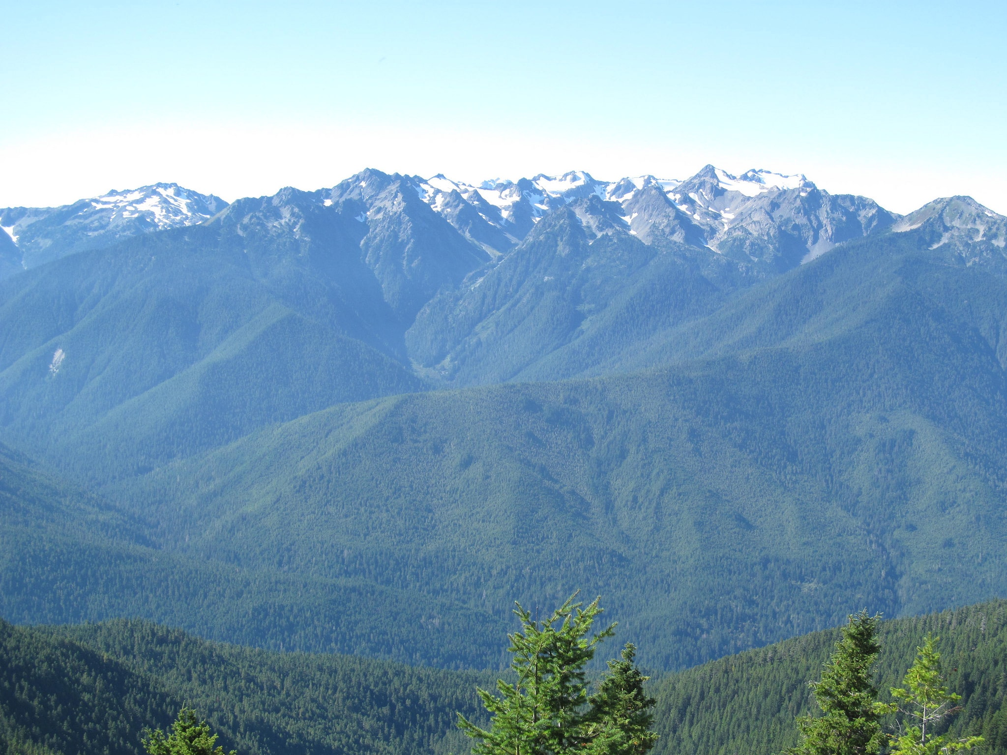 Hurricane Ridge | © Doug Kerr / Flickr